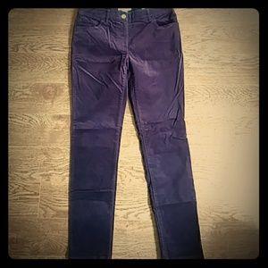 Chico's Ultimate Fit Plush Purple Velveteen Pants